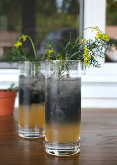 Energizing and Detoxifying Charcoal Lemonade - Holistic Health Herbalist