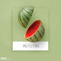 Color Palette Inspiration | Watermelon Green | #b1c18c