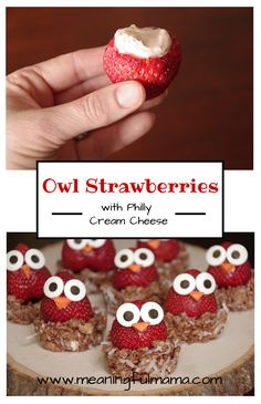 Owl Strawberries made with Philadelphia cream cheese - Meaningful Mama
