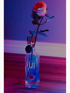 'VaporWave rose' Poster by Kevzelaya - - for the dank Fiji water memes Aesthetic Space, Aesthetic Colors, Retro Aesthetic, Aesthetic Pictures, Rainbow Aesthetic, Aesthetic Drawing, Aesthetic Collage, Bedroom Wall Collage, Photo Wall Collage