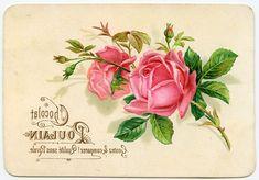 17 Ideas De Transferencias En Madera Transferencias De Imágenes Transfer En Tela Láminas Vintage