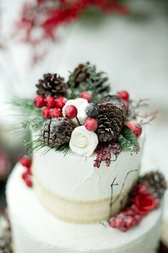 Winter wedding cake - Pinecones and berries --Wedding Cake: Once Upon a Cake Co.