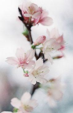 yuffii: A new step (by **mog**)