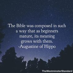 St Augustine Weather In July St Augustine Quotes, Augustine Of Hippo, Catholic Quotes, Religious Quotes, Early Church Fathers, Christian Apologetics, Skirt Mini, Reformed Theology, Saint Quotes