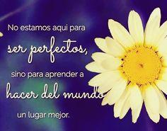 Nadie es perfecto y nadie nunca lo podrá ser.#FrasesMotivadoras #FrasesParaReflexionar #Reflexiones #Frases #Pensamientos #Motivación #Inspiración #TuCambioEsAhora #EsHoraDelCambio