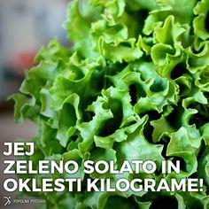 Zelena solata je kraljica zelenjave.  100 g zelene solate ima le 13 kcal.  Nasprotno pa je hranilno polna. Zagotavlja več kot 200% dnevno potrebnega vitamina A. Izpostavimo lahko še vitamin K in C ter B kompleks. Vsi ti vitamini prispevajo k zdravemu imunskemu sistemu in dobri presnovi. S solato lahko zelo enostavno skrbimo za vitko postavo. Naš krožnik zapolni do vrha in tako nimamo občutka lakote ali premajhnega obroka. Hkrati pa svoj organizem kvalitetno nahranimo.
