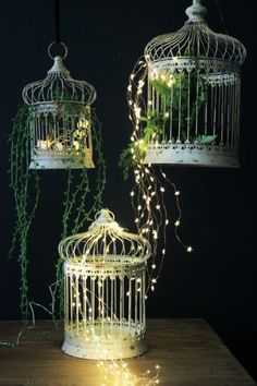 Beautiful Birdcage Set of 3
