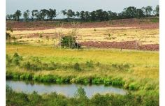 De Rivierduinen wandelroute in het Nationaal Park. Voor meer info, kijk op liefdevoorlimburd.nl