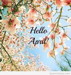 Hello april spring photo