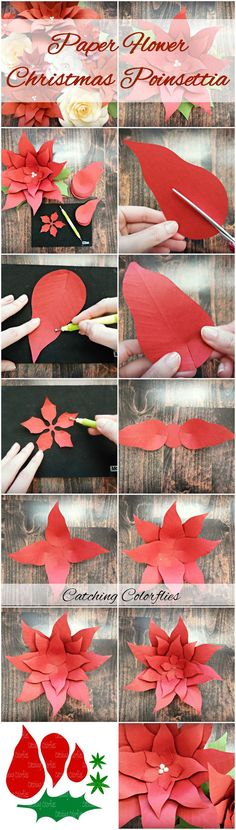 Paper Poinsettia Flowers, Giant Paper Flowers, Flower Pattern & Tutorial, Christmas Flower Photo Backdrop, Christmas Decor