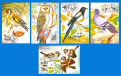 MOLDOVA. MAXIMUM CARDS BIRDS. Set of 5 pcs. Special Postal Cancellation - 2010