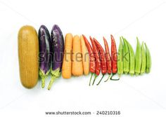 Different type of long vegetables arranged in a row on white background. - stock photo