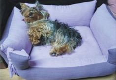 DIY-Couch-Pet-Bed-1.jpg
