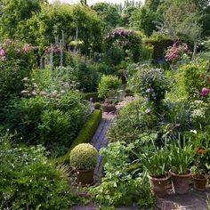 Dial Park in June Farm Gardens, Small Gardens, Outdoor Gardens, Garden Borders, Natural Garden, Garden Styles, Dream Garden, Garden Planning, Garden Projects