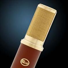 HelloMusic: Blue Microphone Woodpecker Ribbon  http://www.hellomusic.com/items/woodpecker-ribbon