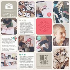 Project Life Template Squared Away 14 | digital project life by Jenn McCabe