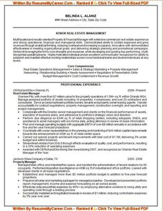 Professional Resume Builder Service Capital Essay Provides Professional Resume Writing Services For