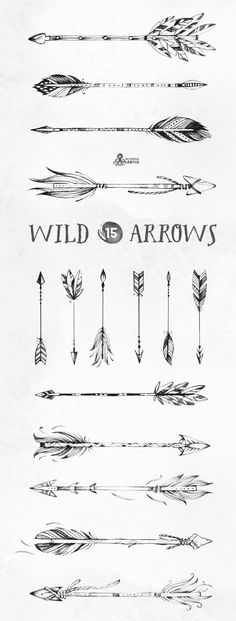 Combination of these for my arrow