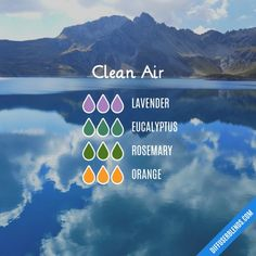 Clean Air - Essential Oil Diffuser Blend