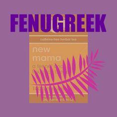 Fenugreek Tea - Breastfeeding Tea - New Mama