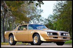 78 Pontiac Trans Am