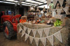 farm tractor boy's birthday party