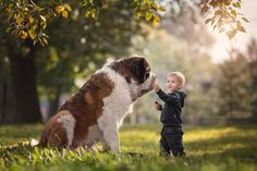 """""""Little Kids and their Big Dogs.jpg (960×640)"""
