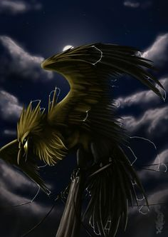 Re-Drawn, Awesome Pokemon Zapdos