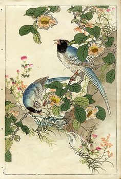 Bairei Flower and Bird Prints 1899, Blue Trogon, Camelia