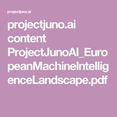 projectjuno.ai content ProjectJunoAI_EuropeanMachineIntelligenceLandscape.pdf