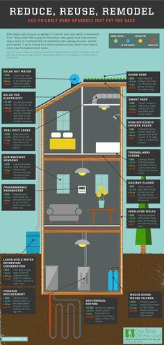 Eco-Friendly Ideas for Homes - LandlordStation.com