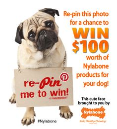 Enter our #Pinterest #Sweepstakes for a chance to win $100 of #Nylabone goodies: www.nylabone.com/pinterest-sweepstakes.htm