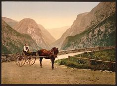 Norwegian carriage, Hardanger Fjord, Norway - Picture produced using the Photochrom system - 1890s