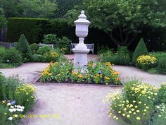 flowers on path in a cottage garden