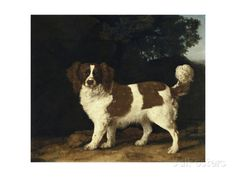 Fanny, the Favourite Spaniel of Mrs. Musters, Standing in a Wooded Landscape, 1777 Giclee Print by George Stubbs at AllPosters.com