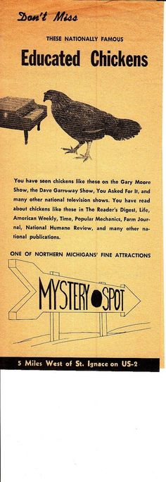 Educated Chickens Mystery Spot Near St Ignace Michigan Vintage Brochure | eBay