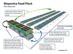 A better aquaponics design. - Hmmm, incorporate some of this design elements?