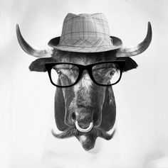 Bevo in disguise with glasses.  I want this reproduced on my wall.  http://ffffound.com/