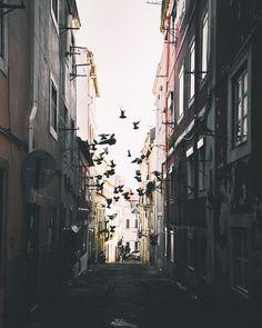 Portugal, Berlin, Dreams, City, Instagram, City Drawing, Cities, Berlin Germany