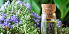 Best ways to use rosemary oil for hair growth. Top rosemary oil uses and benefits. Simple rosemary recipes for hair care. How to use rosemary oil for hair? Huile Tea Tree, Tea Tree Oil, Essential Oils For Hair, Essential Oil Uses, Pure Essential, Natural Hair Growth Treatment, Rosemary Oil For Hair, Rosemary Herb, Home Remedies For Hair