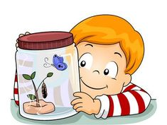 Find Illustration Little Boy Observing Life Cycle stock images in HD and millions of other royalty-free stock photos, illustrations and vectors in the Shutterstock collection.
