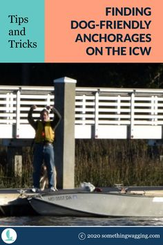 Taking your boat down the ICW with your pup? How will you find places to take your dog off the boat? Here's my best tips for finding dog-friendly anchorages along the ICW. Dogs On Boats, Great Places To Travel, Edisto Island, Living On A Boat, Dog List, Kinds Of Dogs, Pet Travel, Dog Friends