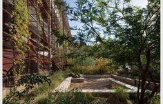 Underwood Family Sonoran Landscape Laboratory   Project   Architype