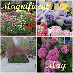 Magnificent May - My Own Balance