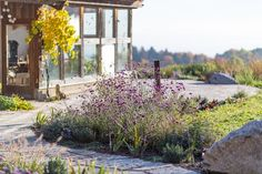Belaege Bauerngarten Blumenbeete