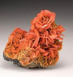 Wulfenite - Jianshan Mine, Ruoqiang Co., Xinjiang A. Minerals And Gemstones, Crystals Minerals, Rocks And Minerals, Stones And Crystals, Cool Rocks, Beautiful Rocks, Quartz Geode, Mineral Stone, Rocks And Gems