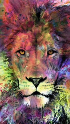 'Lion Watercolor Splash Portrait ' Case/Skin for Samsung Galaxy by Nora Gad Löwe-Aquarell-Spritzen-Portrait Lion Painting, Galaxy Painting, Watercolor Lion Tattoo, Watercolor Paintings, Watercolor Wallpaper, Watercolor Animals, Lion Photography, Lion Poster, Aquarell Tattoo