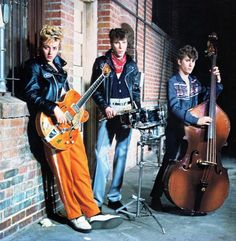 stray cats - Google Search