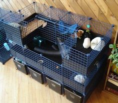 This would fit in a small space and still have plenty of room for the pig. Wheek! Wheek!