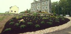 Watch to learn how we landscaped a hillside and corrected some hastily installed latticework!
